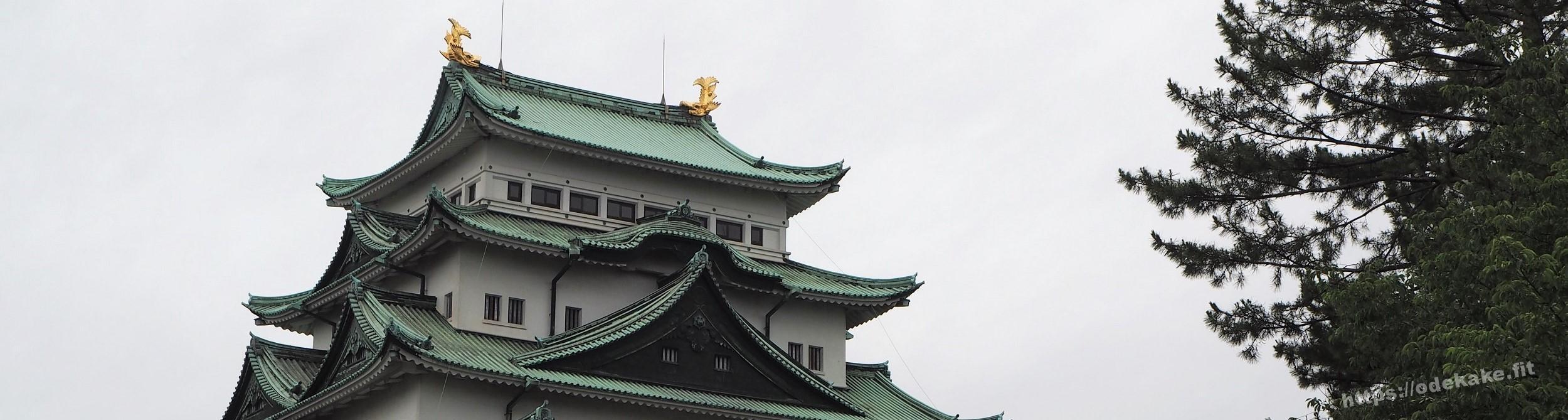 【日帰り名古屋】名古屋城の新しい本丸御殿に行ったので写真で紹介♪豪華絢爛!